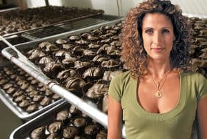Melina Kanakaredes To Star In 'Greek Candy' TV Comedy About Family Candy Shop